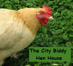 sparky hen city biddy